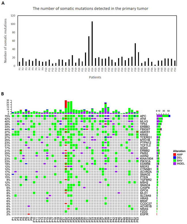 Molecular characterization of 48 primary colorectal tumors.