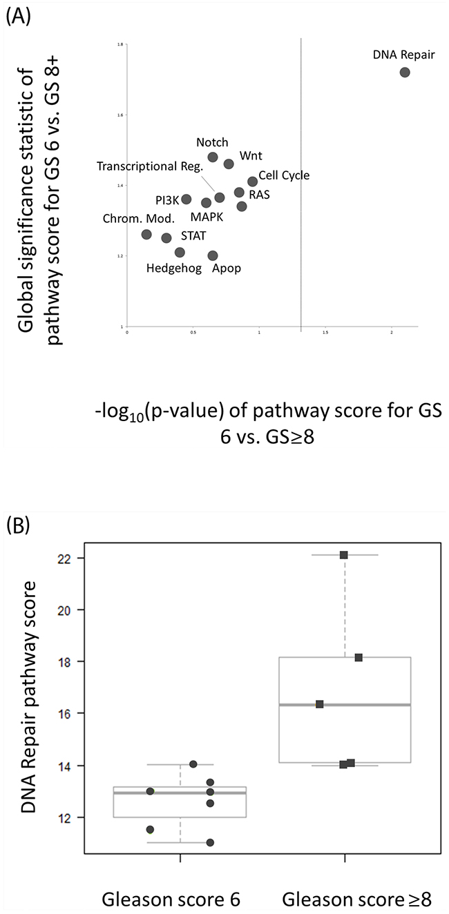 DNA Repair pathway deregulation is significantly associated with GS ≥8 intra-prostatic lesions.
