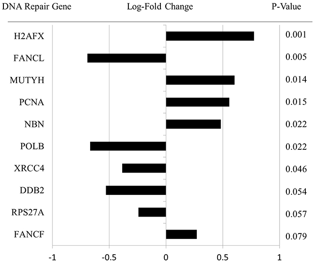Specific DNA Repair pathway gene expression data for all lesions.