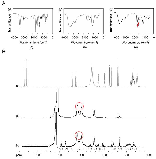 FT-IR and 1H-NMR of Bio-CS.