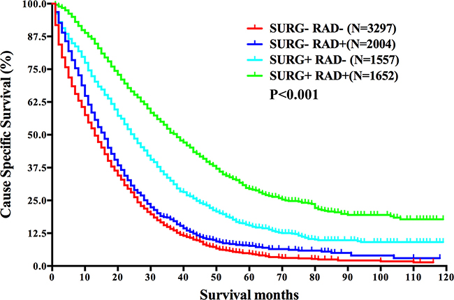 Survival analysis based on the status of both surgery and radiation in mRC.