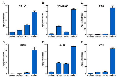 MDM2 Inhibitor Combinations with PI3K and MEK Inhibitors Yield Dramatic Increases in Apoptosis but Small Incremental Reductions in Proliferation.