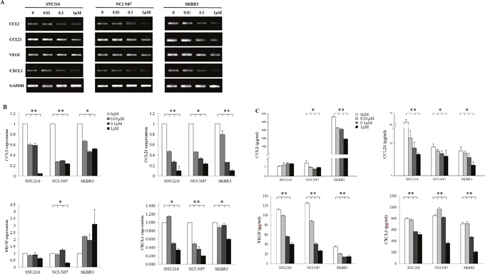 Effect of HER2 blockade on the cytokine release of tumor cells.