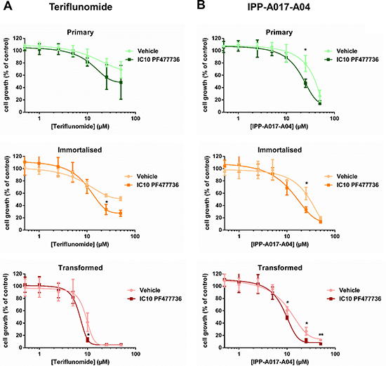 The combination of teriflunomide and PF477736 results in increased antiproliferative effect in transformed mouse embryonic fibroblasts.