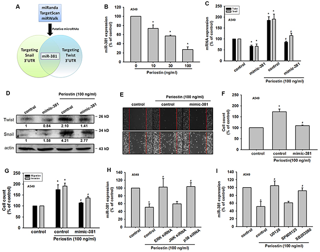 Periostin induces Twist and Snail expression by miR-381 repression in lung cancer cells.