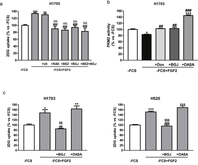 Role of AKT/mTOR and PKM2 in the regulation of FGF2-mediated glucose metabolism.