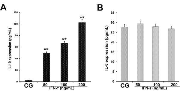 Effect of IFN-τ on IL-10 and IL-6 production in EECs.