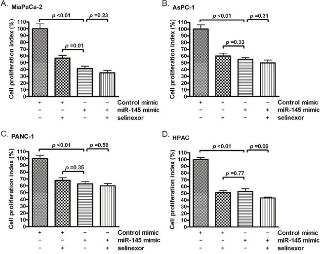 Selinexor treatment or miR-145 mimic transfection inhibited the proliferation of PDAC cells.
