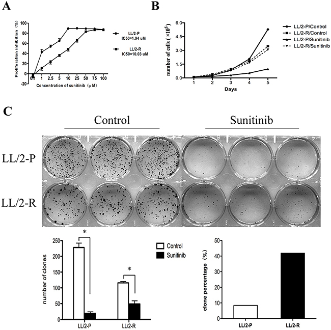 Acquired resistance to sunitinib in LL/2-R cells.