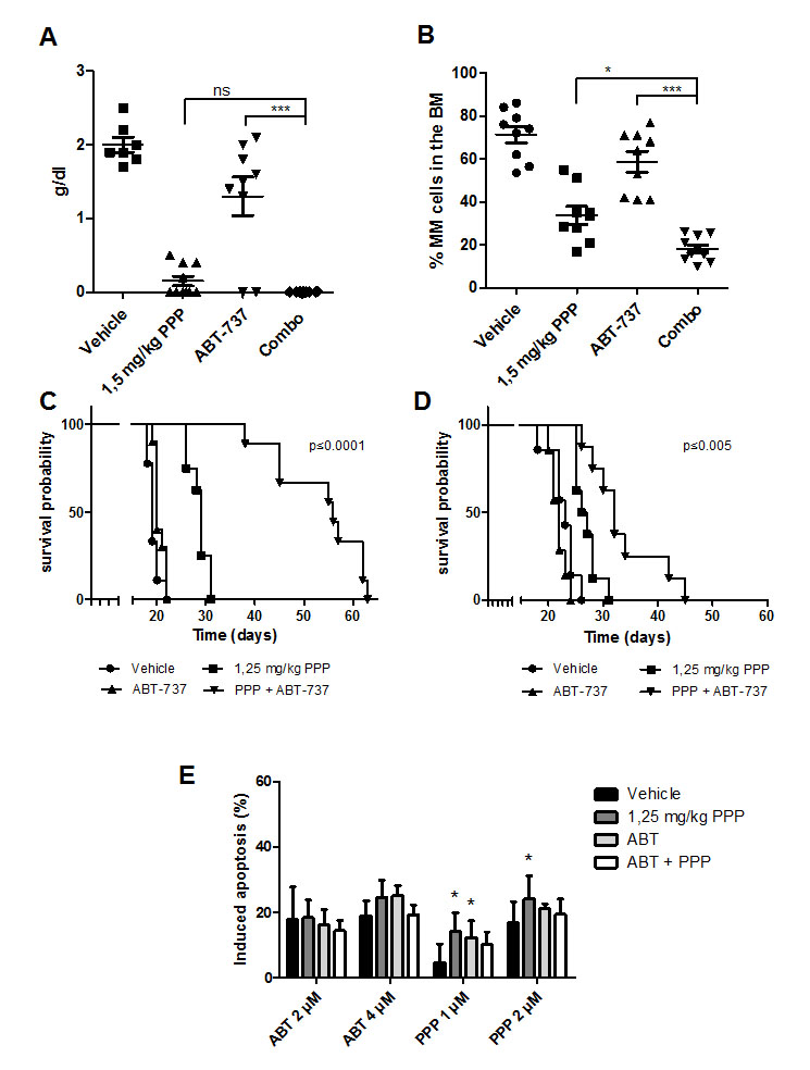 Co-treatment significantly reduces tumor burden and prolongs overall survival of 5T33MM inoculated mice.