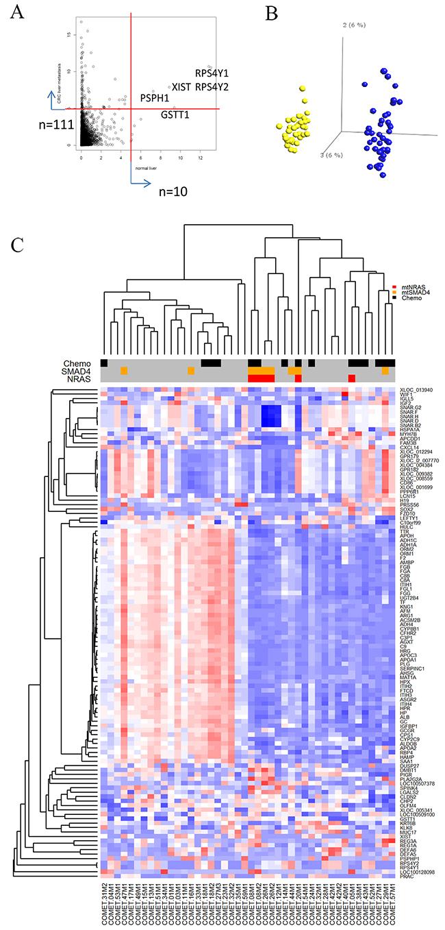 Gene expression variability in tumor-adjacent liver samples and metastases.