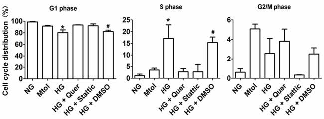 Cell cycle distribution of HG-treated VSMCs