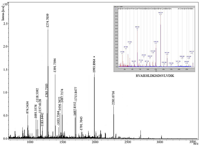 Identification of protein spot 2 recognized by sera from patients with NSCLC by mass spectrometry.