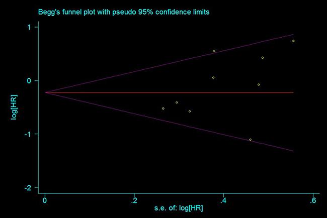 Funnel plot for publication bias estimation, rs11615 OS (TC+CC vs. TT).