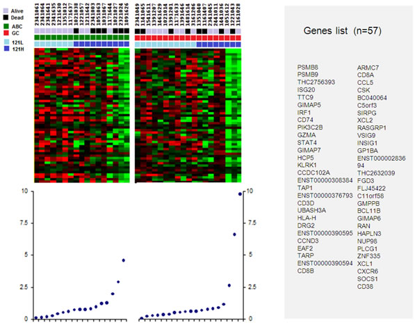 Genes set correlating to low and high levels of VEGF