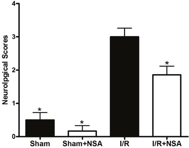 NSA treatment decreased neurological deficits after cerebral I/R injury.