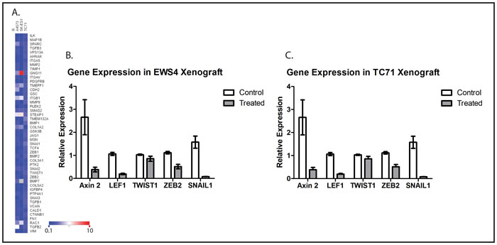 WNT974 downregulates Wnt target genes and metastasis-related genes in ES cell lines and xenografts.