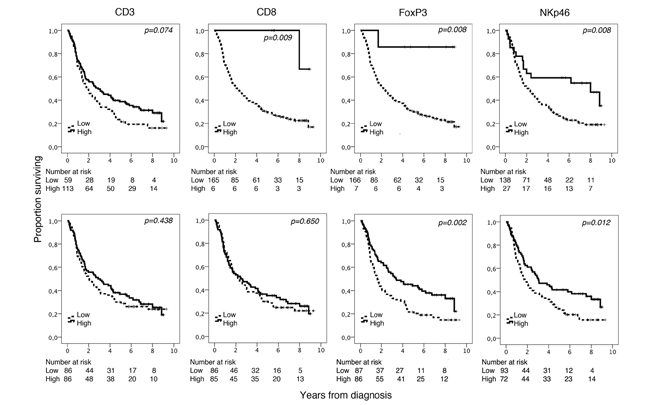Kaplan-Meier analysis of overall survival in strata according to high and low total density of CD3+, CD8+, FoxP3+ and NKp46+ cells in the entire cohort, defined by CRT analysis (top row) and using the median value as cutoff (bottom row).
