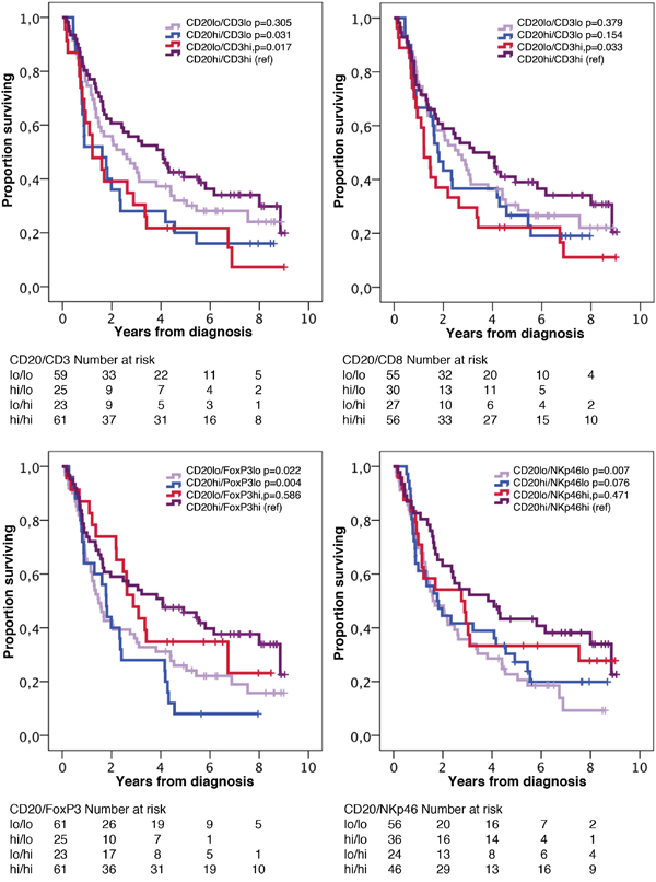 Kaplan-Meier estimates of overall survival in strata according to combinations of high and low density of CD20+ cells and CD3+, CD8+, FoxP3+ and NKp46+ cells, respectively, in the entire cohort.