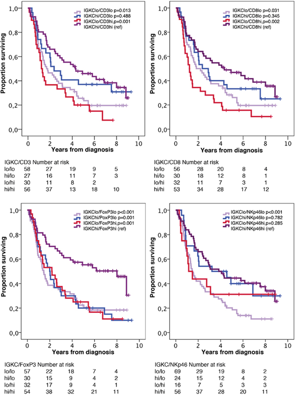 Kaplan-Meier estimates of overall survival in strata according to combinations of high and low density of IGKC+ cells and CD3+, CD8+, FoxP3+ and NKp46+ cells, respectively, in the entire cohort.