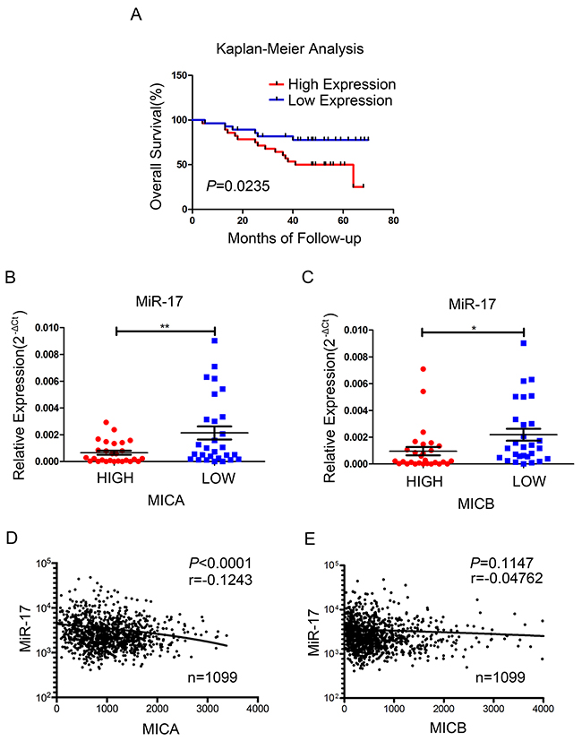Association of miR-17 with the expression of MICA/B and survival in human breast cancer.