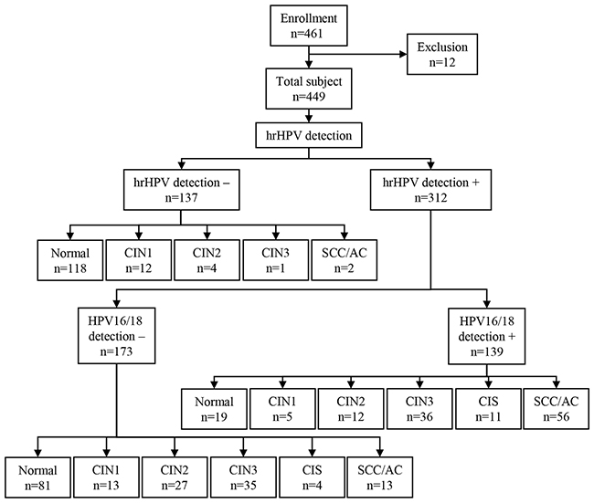 Study flow chart from enrollment to hrHPV outcome.