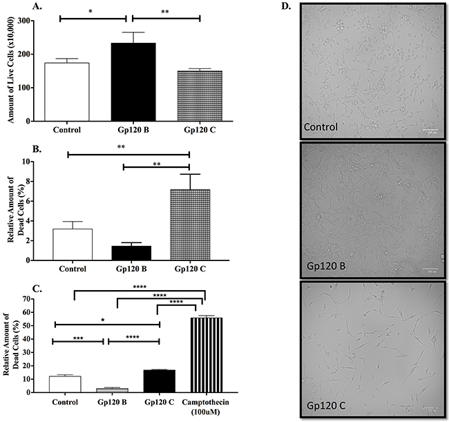 HIV-1 clade B and C gp120 proteins induced a differential interclade effect in cell viability and cell death in U87-MG cells