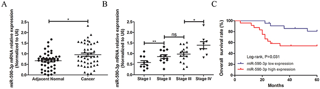 Statistical comparisons of the miR-590-3p expressions in tumor tissues and normal colorectal mucosae.
