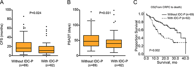 Differences of CFS, PSADT and OS between IDC-P(+) and IDC-P(–) patients.