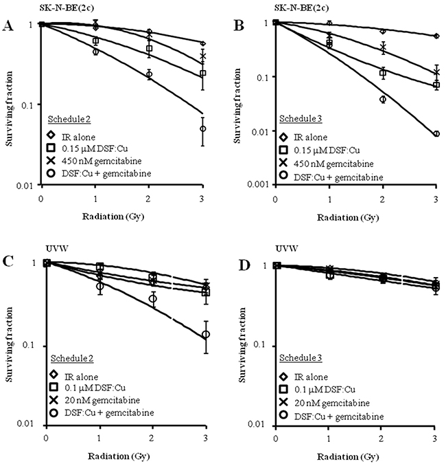 The effect of drug administration according to schedules 2 and 3 on clonogenic survival of SK-N-BE(2c) and UVW cells.