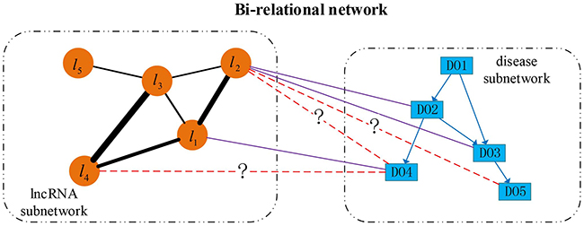 An illustrative example of directed bi-relational network.