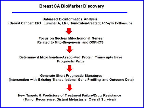 Flow-diagram illustrating our overall informatics approach to breast cancer biomarker discovery for predicting tamoxifen-resistance.