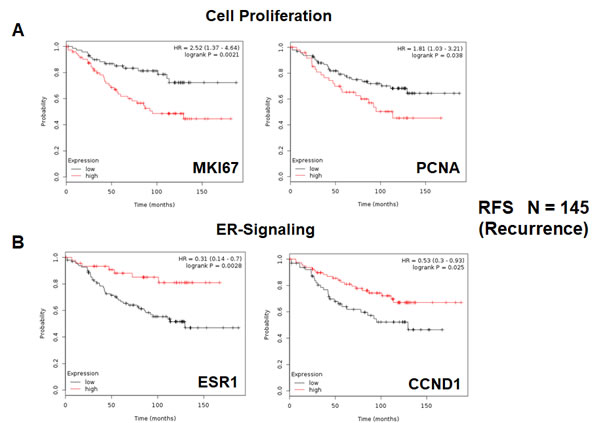 Conventional markers of proliferation and estrogen-receptor-alpha signaling predict clinical outcome in high-risk ER(+) breast cancer patients.