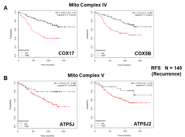 Mitochondrial complex IV and complex V proteins are associated with tumor recurrence in high-risk ER(+) breast cancer patients.