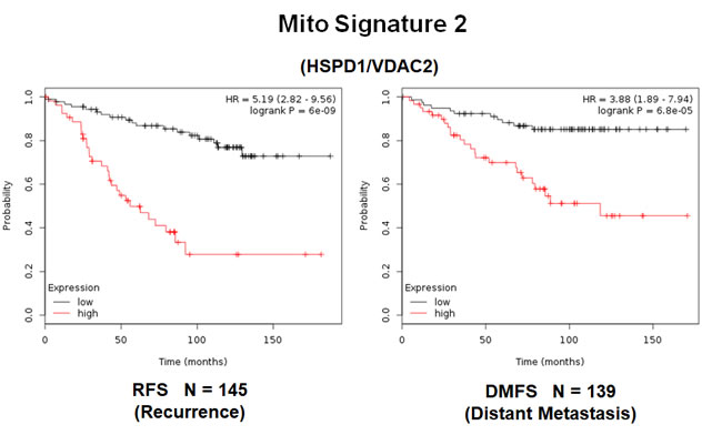 A short mitochondrial signature (Mito-Signature-2) predicts poor clinical outcome in high-risk ER(+) breast cancer patients.