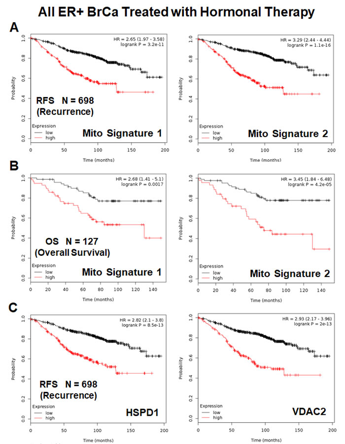 Mitochondrial signatures 1 and 2 both have predictive value in a larger group of ER(+) breast cancer patients, who were treated with hormonal therapy.