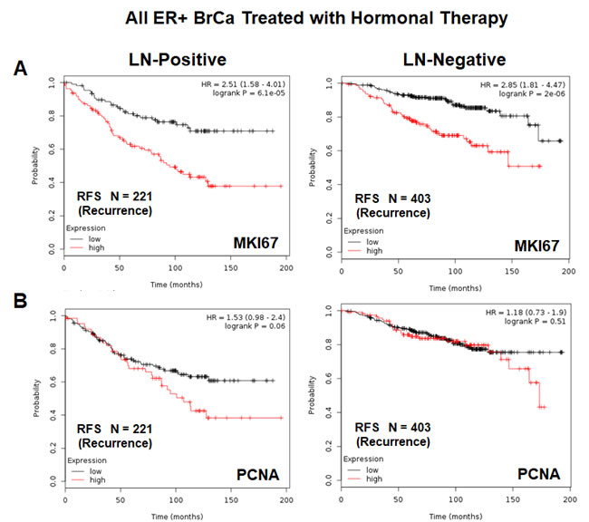 K-M analysis with conventional proliferative markers, in the same patient population, is shown for comparison.