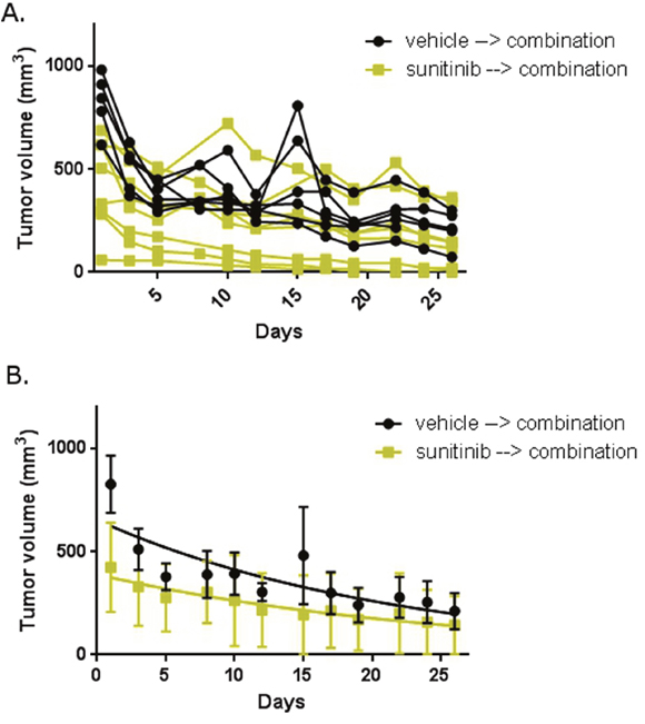Abemaciclib in combination with sunitinib is active in RCC in mice.