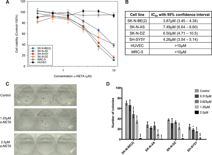 The CMKLR1 antagonist α-NETA reduces the cell viability and clonogenicity of neuroblastoma cell lines.