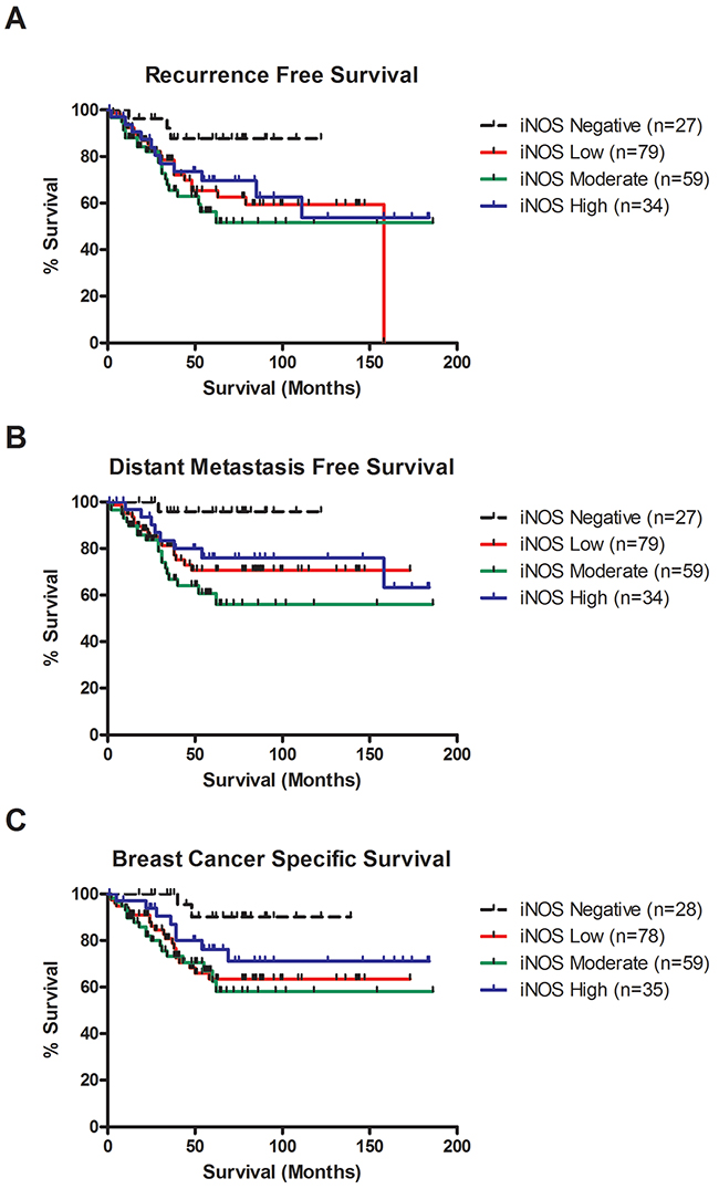 iNOS expression is associated with decreased recurrence free survival, distant metastasis free survival and breast cancer survival in TNBC.