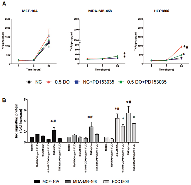 NO induces increased TNFα secretion and activation of NF-κB in HCC1806.