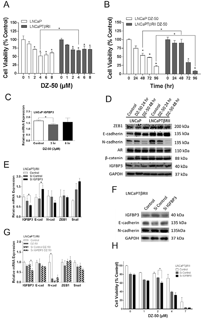 Functional involvement of IGFBP3 in the reversion of EMT to MET in prostate cancer cells.