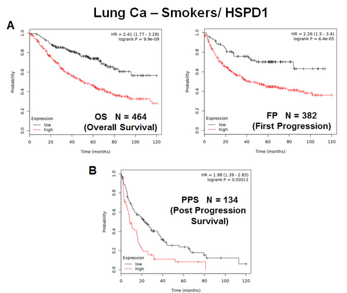 The mitochondrial chaperone, HSPD1, predicts poor clinical outcome and tumor progression in lung cancer patients: Smokers.