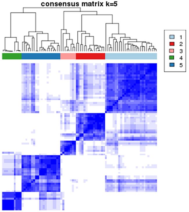Consensus clustering analysis results displaying the robustness of sample classification using multiple iterations of k-means clustering.