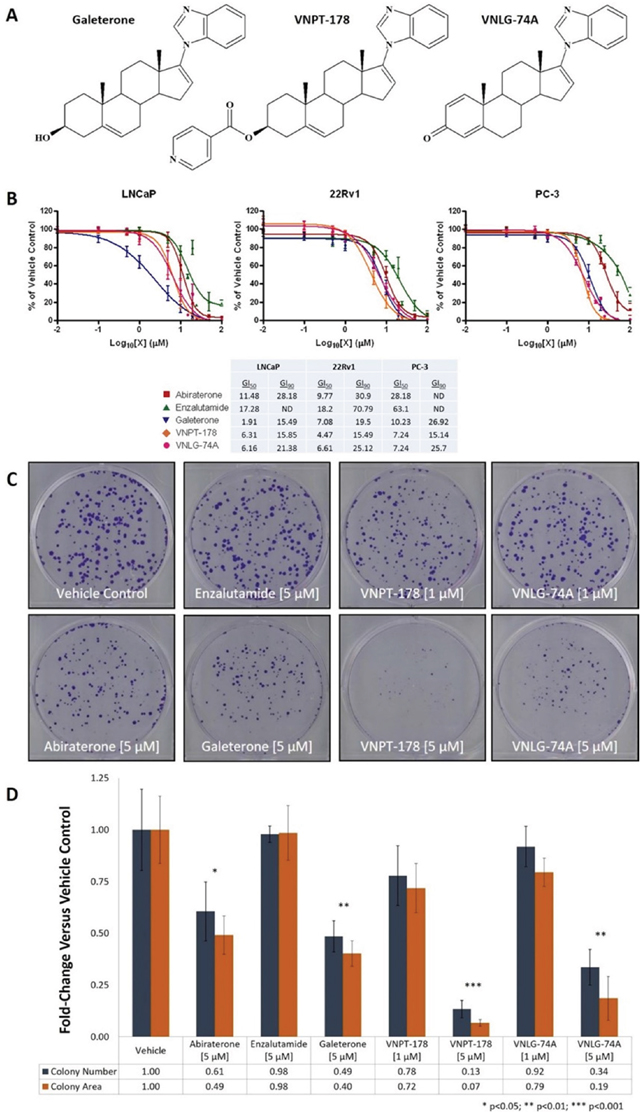 Galeterone analogs VNPT-178 and VNLG-74A inhibit the proliferation of PC cell lines in vitro.