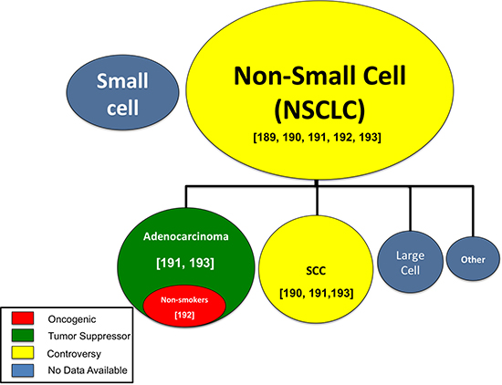 MiR-708-5p research by lung cancer subtype.