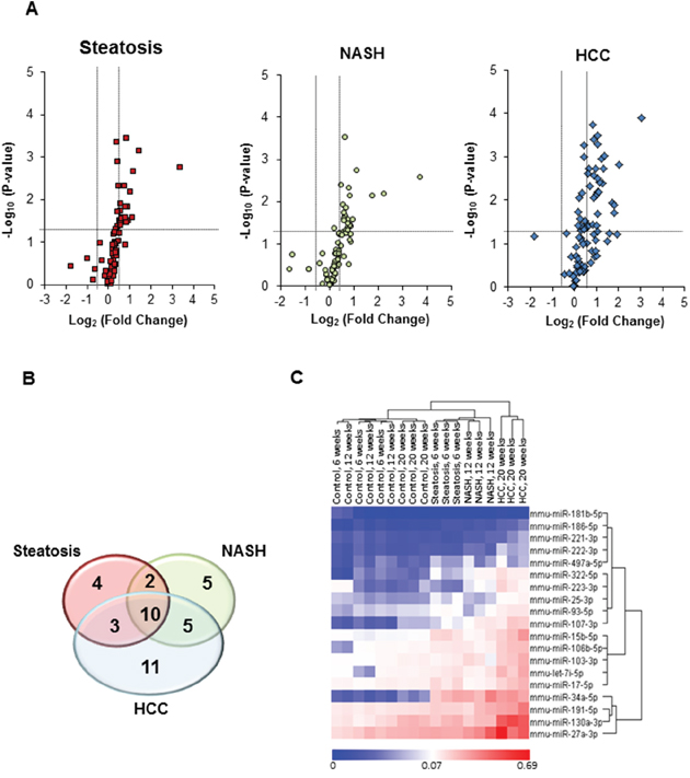 miRNA expression profiles in the livers of STAM mice subjected to NASH-associated hepatocarcinogenesis.