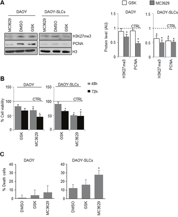 Biological effects of EZH2 inhibition in DAOY cells and DAOY-SLCs.