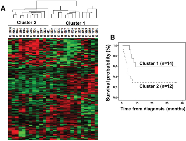 Unsupervised hierarchical clustering of miRNA expression in mesothelioma tumors.