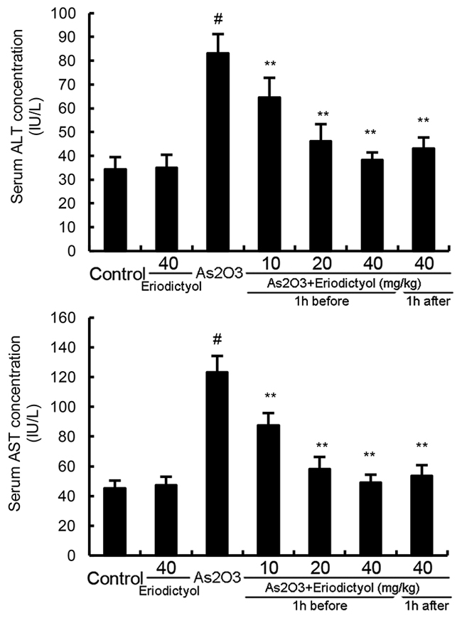 Effects of eriodictyol on As2O3-induced ALT and AST levels.